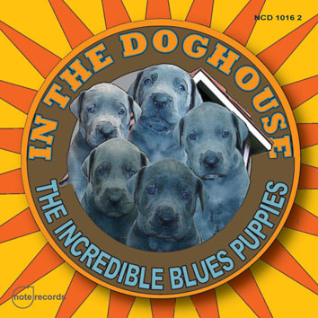 Dog House Cover
